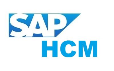 SAP HCM Training In Anna Nagar